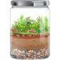 Biosphere Funbook