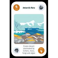 Antarctic Flora