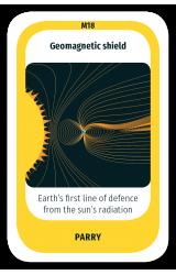 Geomagnetic Shield
