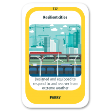 Resilient Cities